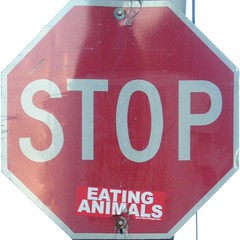 stop eating animals - by striatic