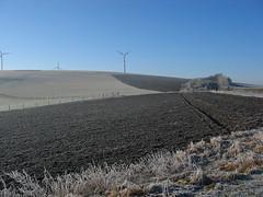 Winter Landscape With Windmill (picaddict) Tags: germany deutschland hoarfrost felder windmills fields raureif winterlandscape winterlandschaft windenergie windräder