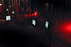 Displacements ( Tatiana Cardeal) Tags: 2005 brazil brasil refugee photojournalism documentary portoalegre social tatianacardeal brsil worldsocialforum eos100 documentaire documentario socialmovement frumsocialmundial
