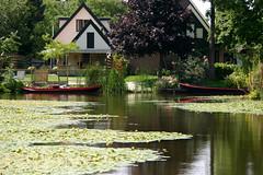 dutch waterside in summer (dirk huijssoon) Tags: summer holland op polder waterside broek northholland westfriesland broekoplangedijk langendijk broekoplangendijk