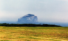 Bass Rock, Firth of Forth, Scotland - by PhillipC