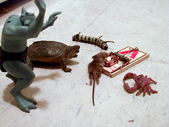 The Monsters Mourn Their Fallen Brother (muckster) Tags: dead mouse mousetrap animals death toys monsters crab turtle troll demented horrible inhumane cruel diorama 110fav topv111 topi