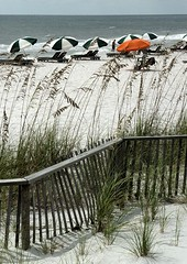 beach curves (zen) Tags: ocean orange sand fences grasses umbrellas 20030926 zensutherland