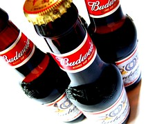 Bud Bottles (Chris_J) Tags: red art beer topv111 studio cool drink kodak beverage pop pointandshoot studioshot bud onwhite amateur budweiser pointshoot kodakpointshoot kodakpointandshoot kodakdx6340 dx6340 budwiser abigfave
