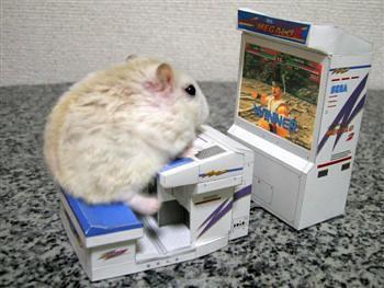 Hamster by Rosemobile