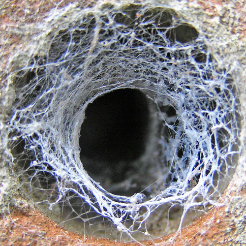 how to fix a medium sized hole in the wall