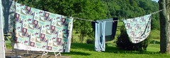 jeans drying on the line (spearson) Tags: psfk pa farm usa mycooljeans