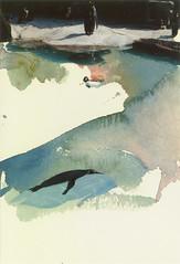 penguins (sasazukabatta) Tags: collage watercolor painting penguin aquarium artwork drawing mixedmedia postcard watercolour clipping artworks photographicpaper postcardsize photoclipping