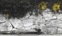 i see flowers everywhere! (Bim Bom) Tags: stone museum belgium belgique belgi liege pedra luik lige belgien wallonie lttich wallonia