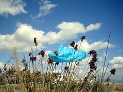 blue plastic cloud (BlueSunFlower) Tags: blue sky clouds lafotodelasemana sand wind bluesunflower lfsnubes