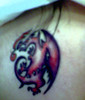 My tatoo Il Drago, le
