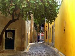 Surroundings V (Teresa Teixeira) Tags: portugal lisboa lisbon jorge castelo são castelodesjorge mteresa colorphotoaward