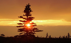 Yukon sunset (xtremepeaks) Tags: sunset red sky canada nature beautiful clouds smoke yukon stunning deleteit saveit saveit2 deleteit2 saveit3 deleteit3 deleteit4 deleteit5 deleteit6 deleteit7 deleteit8 deleteit10 deleteit9 interestingness86 i500 explore22feb06 aplusphoto