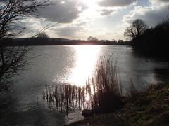 DSC00443 (edwardsgt) Tags: canal reservoir tring grandunion