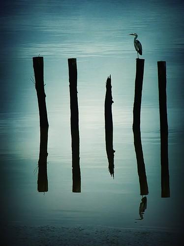 Even flow (TEN)