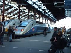 TGV (Felipe Bachomo) Tags: railroad people paris france station train frankreich gente frana railway trains trainstation 75 francia tgv pars sncf  parigi garedelyon  highspeedtrain   paname pariz   parizo pantruche