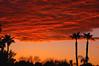 Red cloud (gwilmore) Tags: sunset arizona cloud wow d50 albaluminis interestingness429 i500 amomentcapgrp explore08mar2006 fcsetsrises