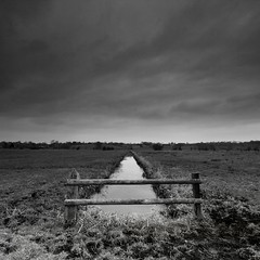 Rhyne Fence I (Adam Clutterbuck) Tags: uk longexposure greatbritain sky blackandwhite bw cloud 20d monochrome fence square landscape mono blackwhite somerset canoneos20d bn minimal drain elements slowshutter gb bandw simple sq limitededition levels drainage slowshutterspeed distilled simplified greengage somersetlevels 1in10f50v rhyne asymmetrya scoreme45 adamclutterbuck tealhammoor tealham sqbw bwsq showinrecentset limitededition195 midedition le195