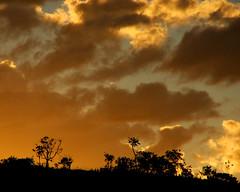 Primeiro Pr do Sol (...anna christina...) Tags: light sunset sea summer sky sun sol beach nature water brasil garden cores live natureza paisagem vermelho jorge sunrises viagens so lanscape sojorge gois vermelhos chapadadosveadeiros planaltocentral allxpressus