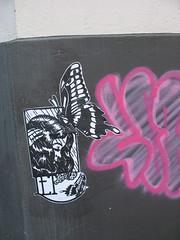 Graffiti/Duesseldorf (Supermietzi) Tags: pink streetart pasteup butterfly poster graffiti neon wand spray dsseldorf let duesseldorf aufkleber schmetterling lesenfantsterribles