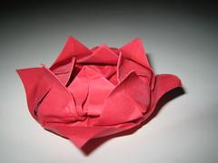 Lotus Flower 2 (*Sherry*) Tags: red flower origami lotus handmade folded fold paperfolding sherryli sherryxjli sherryliphoto traditionallotus