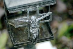 Tiny Lantern (DBarefoot) Tags: flowers venice italy cemetery graves sinking isoladisanmichele