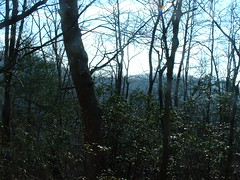 View from the privy (Palila) Tags: camping hiking trail appalachian day4 appalachiantrail privy hawkmountianshelter