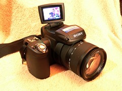 FOR SALE: Sony DSC-R1 (Chuckumentary) Tags: forsale r1