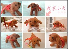 060407羊毛。我家小犬_fn (Kite_yu) Tags: dog felting felt carft