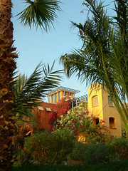 A garden view: Sheraton Miramar Resort El Gouna, Hurghada - Egypt (mnadi) Tags: flowers blue trees sunset red summer vacation sky orange sun holiday flower colour colors yellow garden palms warm colours outdoor redsea curves egypt sunny resort arabic clear gouna egyptian styles sheraton ethnic spa miramar hurghada michaelgraves bedouin  nubian elgouna bougainvilleas