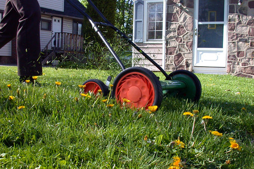 Lawnmower by bert_m_b, on Flickr