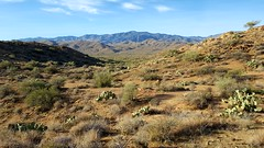 20161210_085821 (Ryan/PHX) Tags: trailrunning bct blackcanyontrail arizona desert outdoors ultrarunning aravaiparunning