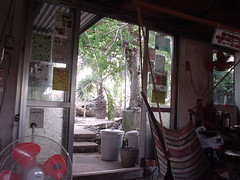 View from the guest house (izumi33) Tags: taketomi island