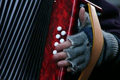 Playing ... (Berta...) Tags: dickensfestival deventer accordeon hand red grey berta flickrettes wonder womanonly mitaines music
