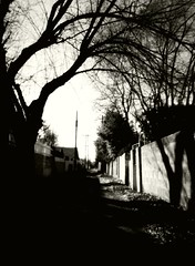 Apartment Alley (Miguel Navrot) Tags: bw film alley albuquerque pinhole zeroimage zero69 kodak125px