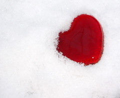Heart in the snow (cattycamehome) Tags: winter red white snow color colour love ice topf25 topv111 tag3 taggedout frozen tag2 all tag1 heart bright quote  valentine rights freeze valentines lovepeace reserved camus peaceandlove catherineingram 555v5f 888v8f photophilosophy topphotoblog cattycamehome allrightsreserved