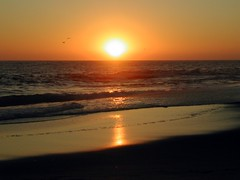 California sunset (angela7dreams) Tags: world ocean california travel sunset sun color reflection beach nature ecology digital outdoors sand nikon waves pics earth culture conservation womenonly coolpix environment wisdom activism gaia lagunabeach global somerightsreserved angelasevin topphotoblog sunsetmosaic bestnaturetnc06 wiserearth bestnaturetnc07