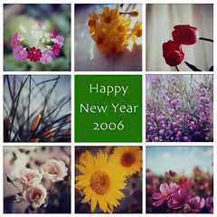 Happy New Year (tearoom) Tags: polaroid sx70 topv333 mosaic 2006 newyear greeting