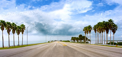 courtney campbell causeway - by katiew