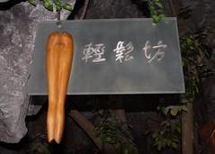 Bathroom Sign - Women (Jon Charest) Tags: china park ladies moon art sign river bathroom women shanghai toilet washroom sheshan 1740mml