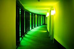 hotel hallway - by waynemah