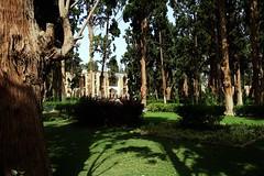 Fin Garden (blondinrikard) Tags: garden iran fin kashan unescoworldheritage fingarden baghefin