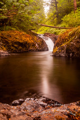 untitled-1-4 (Photos by Wesley Edward Clark) Tags: oregon silverton waterfalls scottsmills abiquacreek abiquafalls