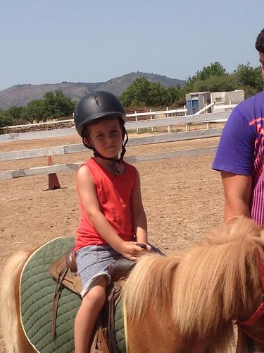 Horses_The Paula Method_6