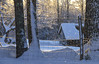 Rustic Winter Glitter (amy20079) Tags: snow newengland maine barn fence winter light landscape rural country nikond5100 backlit morning sunlight sun