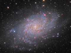 M33: Triangulum Galaxy (2016-2017 edition) (Oleg Bryzgalov) Tags: deepspace astrophoto m33 triangle galaxy astrometrydotnet:id=nova1894042 astrometrydotnet:status=solved