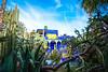 MircK - Villa Oasis (imNOTaPh) Tags: mirck d3100 nikon marrakech morocco jardinmajorelle majorelle sky villaoasis travel travelpho travelphotography garden