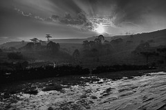 Sun and rain (msabba) Tags: blackandwhite blackwhite sun rain sunset landscape rainy road
