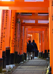 DSC_6049 (okm789911111) Tags: 伏見稻荷神社 千本鳥居 nikon1685