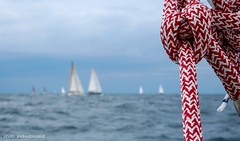 andreabrussi.it_RE-012 (Uploading in progress!) Tags: sailingboat race regata barcaavela mare sea rope knot nodo gassa